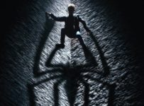 The Amazing Spider-man (2012) - Shadow poster