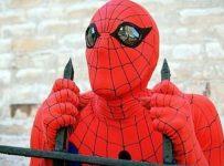 Spider-man - Nicholas Hammond