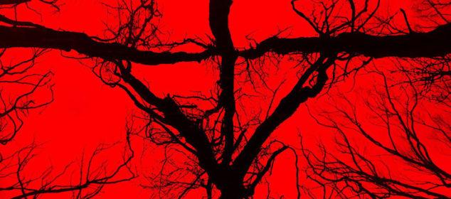 Blair Witch (aka The Woods) - Designer: LA